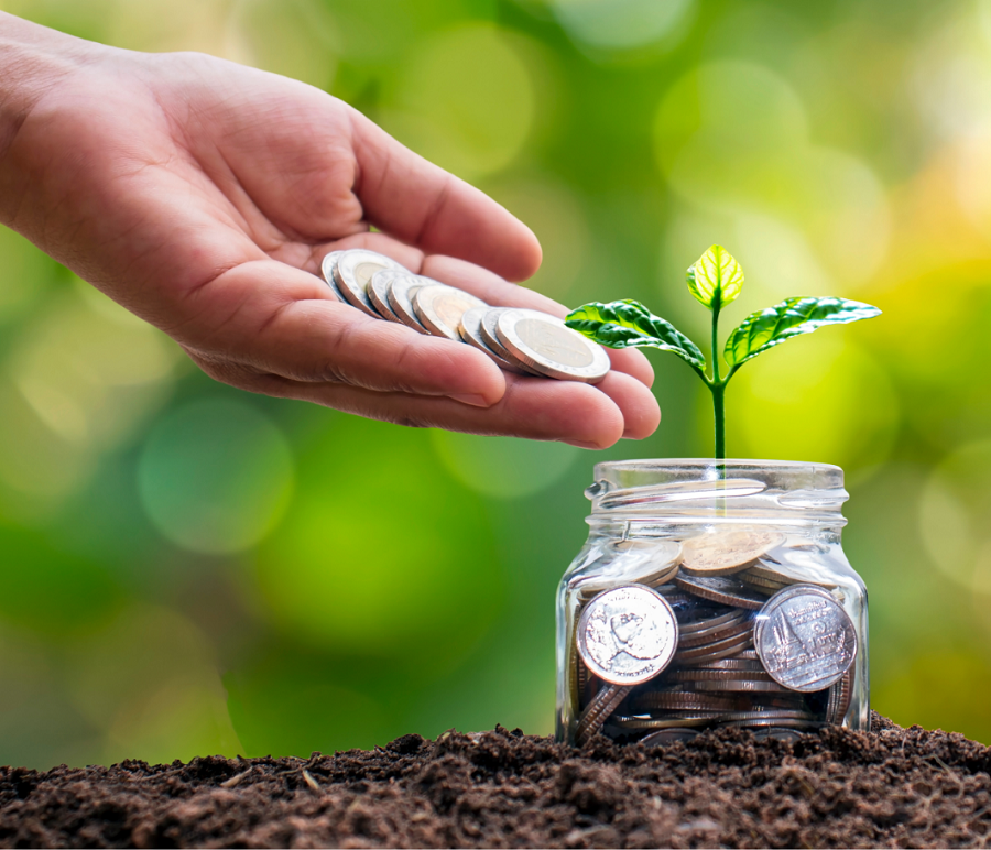 growing your investments